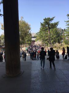 奈良公園 東大寺正門