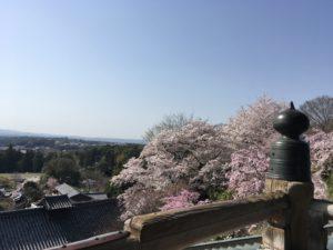 奈良公園 二月堂からの景色
