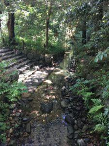 下鴨神社の小川の流れ