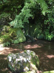 銀閣寺の庭 湧き水