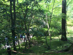 銀閣寺の苔むした庭
