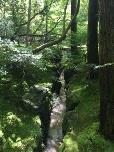 銀閣寺の庭 水路