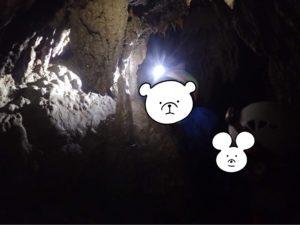 西表島 鍾乳洞 石筍
