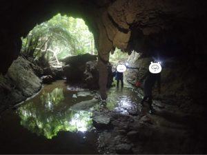 西表島 鍾乳洞 石柱?