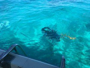 西表島 体験ダイビング 潜りました