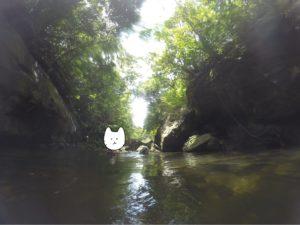 西表島 キャニオニング 川をのんびり流れる