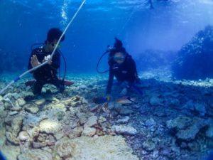 西表島 体験ダイビング 徐々に海底へ