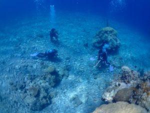 西表島 体験ダイビング 上からの写真