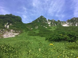 千畳敷カール 山とお花畑