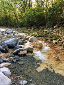 愛知川(えちがわ)の源流