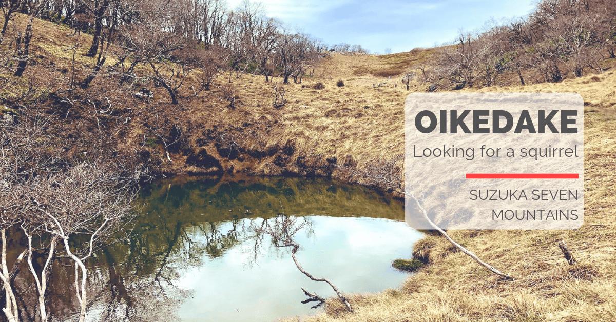 鈴鹿山脈・御池岳|野生のリスと不思議な平原の広がる場所