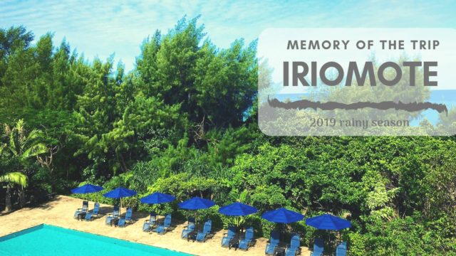 梅雨の西表島でのんびりと|旅の記憶