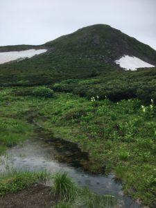 雨でできた池