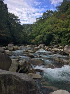綺麗な神崎川
