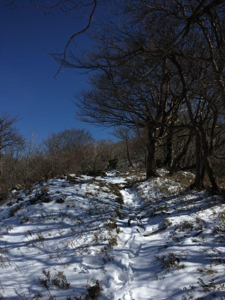 雪解けした稜線の道