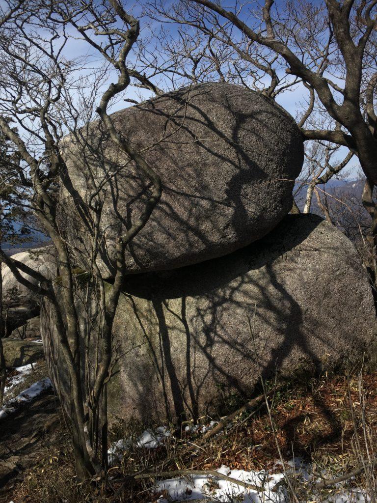 きのこ岩かと思った岩